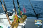 Excellent Fishing Rods Reels