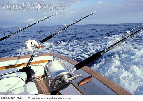 Enticing Rods & Reels