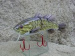 Check this Smallmouth Bass Lures