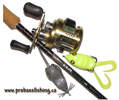 Delicate Best Bass Fishing Reels