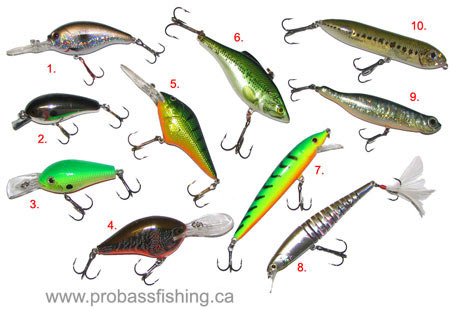 Ravishing Fishing Tackle For Bass